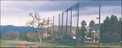 Picture for category Netting